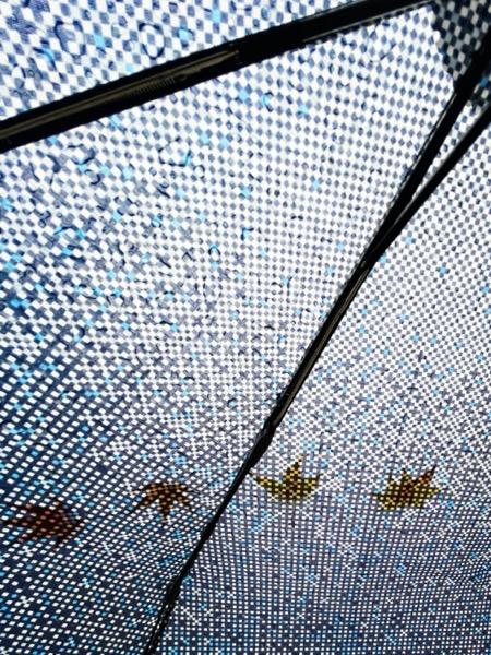 折りたたみ傘に落ちてきた紅葉